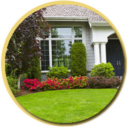 landscaping poolscaping services